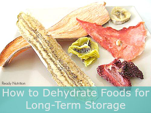 How To Dehydrate Foods For Long Term Storage Ready