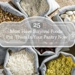 25 Must Have Survival Foods: Put Them In Your Pantry Now