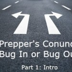 The Prepper's Conundrum: To Bug in or Bug Out? (Pt. 1)