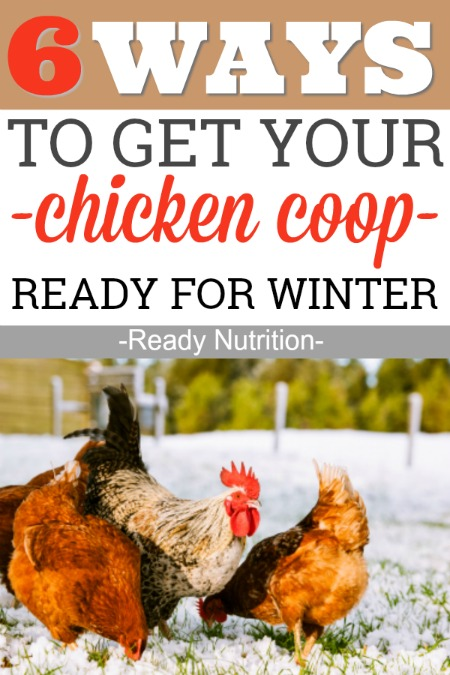 Chicken coops need a little T.L.C. during the winter months. Here are 6 ways to winterize your coop and keep your chickens warm and cozy.
