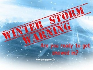 Winter Storm Warning: Are You Ready to Get Snowed In?
