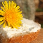 Dandelion Honey Bread