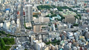 'Tokyo should no longer be inhabited,' Japanese doctor warns residents regarding radiation
