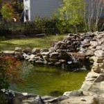 5 Reasons To Add Ponds To Your Homestead