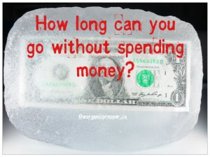 The Austerity Diaries: How Long Can You Go Without Spending Money?