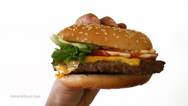 hand holding hamburger fast food ready nutrition official website