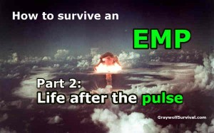 How to survive an EMP – Part 2: Life after the pulse
