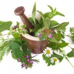 Granny Spears 'Herbology'