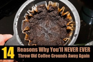 14 Genius Ways To Recycle Used Coffee Grounds