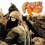 Turmeric Compounds Alleviate Chemical Weapons Injury