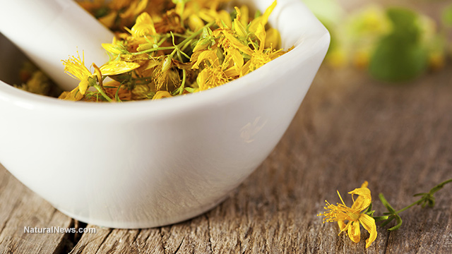 5 Herbs To Naturally Alleviate Menopause Symptoms Ready