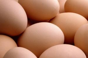 free_range_eggs