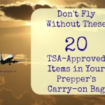 Don't Fly Without These 20 TSA-Approved Items in Your Prepper's Carry-on Bag