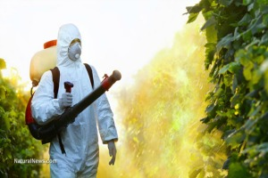 EPA Approves Continued Use of Pesticide That Causes Brain Damage