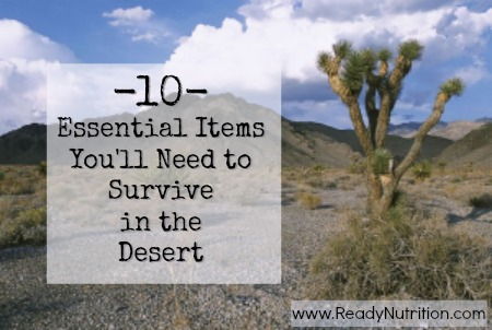 10 Essential Items You'll Need to Survive in the Desert