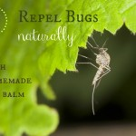 DIY: Repel Bugs Naturally with this Homemade Bug Balm