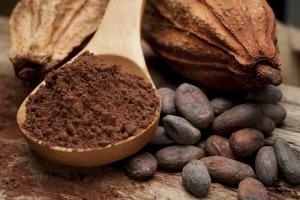 Cocoa: The 11th C of Survivability