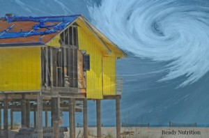 A Family's Survival Story:  Hurricane Katrina, (Part I)