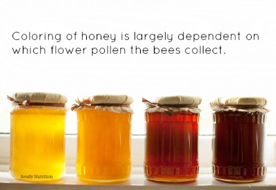 The Natural Pantry A Long Term Storage Guide For Honey