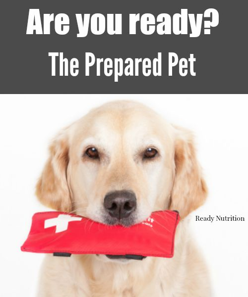 The Prepared Pet