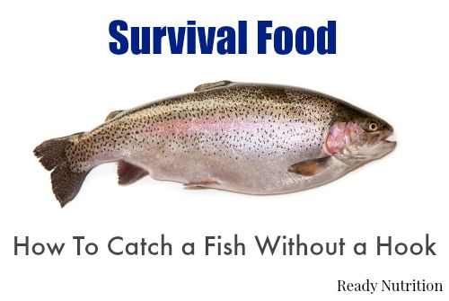 Survival Food: How To Catch a Fish Without a Hook