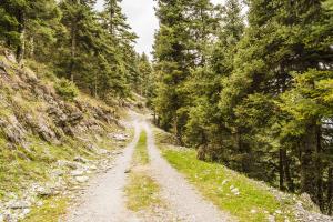 Wilderness Corridors: Agenda 21 Under A New Name