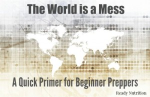The World is a Mess: A Quick Primer for Beginner Preppers