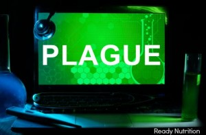 CDC Puts Doctors on Alert for Bubonic Plague in U.S.