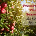 Preserving the Season: All About Apples