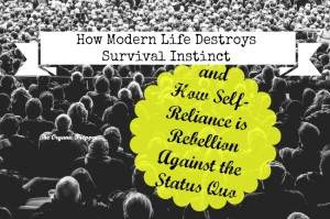 How Modern Life Destroys Survival Instinct
