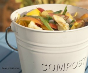 Black Gold: Creating Perfect Compost with Kitchen, Yard and Garden Scraps