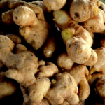 Study Reveals Ginger May Be Stronger than Chemo for Fighting Cancer