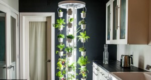 City-Dwellers Can Become Self-Sufficient Gardeners With This Indoor Vertical Farm