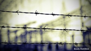 How to Escape a Totalitarian Detention Camp