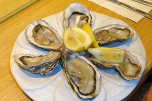 oyster wikimedia