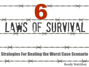 The Six Laws of Survival: Strategies For Beating the Worst Case Scenario