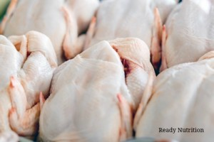 The Beginning of the End: Newly Discovered Superbug In Imported Meat Resistant to All Antibiotics
