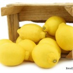 The Lemon Lady: A True Story of How Bartering Pays Off