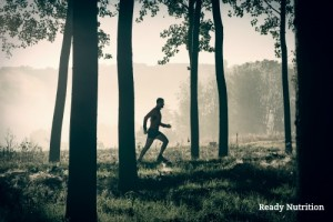 Five Components Determine How Healthy You Are