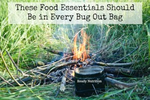 These Food Essentials Should Be in Every Bug Out Bag