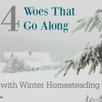 Four Woes That Go Along With Winter Homesteading