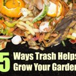 5 Ways Trash Helps Grow Your Garden