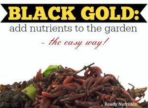 Black Gold: Add Nutrients to the Garden - The Easy Way!