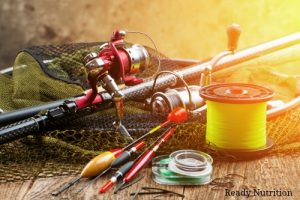 Bass and Bluegill : Two SHTF Protein Sources You Haven't Considered
