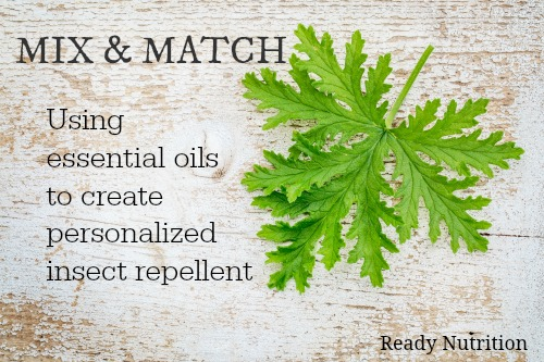 oregano oil as an insect repellent The troops also sang the praises of tea tree oil's insect repellent and anti-fungal properties  when it comes to cellulitis: dilute 10 drops of oil of oregano .