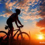 Off-Grid Travel: The DIY Survival Bike