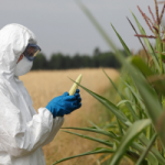 Non-Organic Crops Are About to Become Much More Toxic