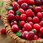 5 Exciting Ways to Use Cranberries