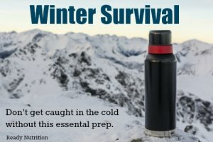 Winter Survival: Don't Get Caught in the Cold Without this Essential Prep