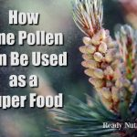 How Pine Pollen Can Be Used as a Super Food